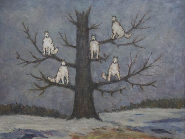 Painting of five white wolves in a tree.