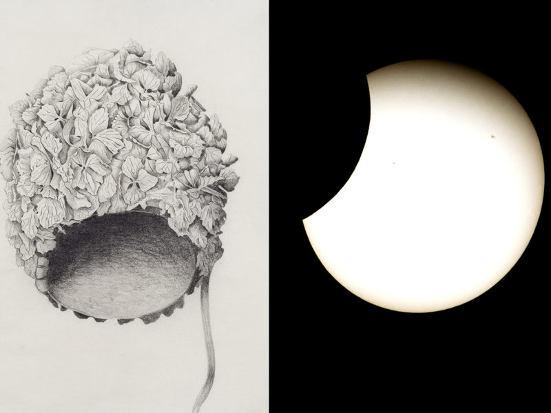 pencil drawing of a swimming cap next to a picture on an eclipse