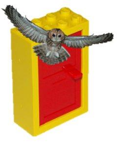 An owl and a lego door